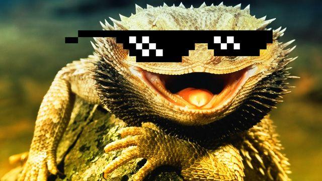 Lizard Squad, Lenovo'nun resmi sitesine mi saldırdı?