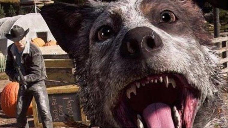 Yeni güncelleme ile Far Cry 5'e beklenen fotoğraf modu geldi