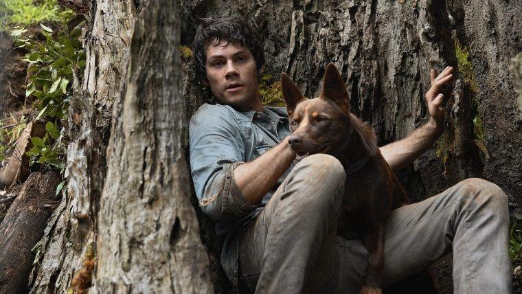Netflix Aşk ve Canavarlar filmi için eğlenceli bir fragman yayınladı