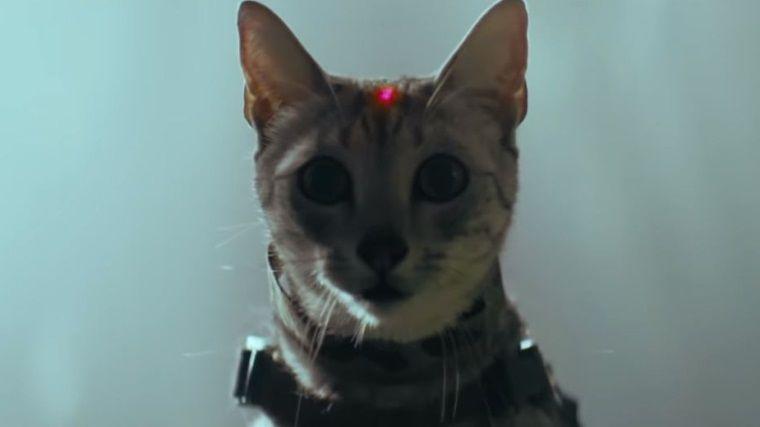 Shadow of the Tomb Raider'ın köpek ve kedili fragmanı yayınlandı