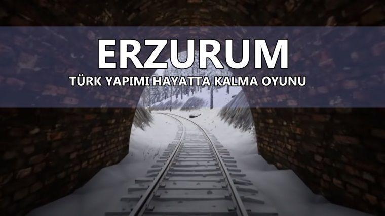 Erzurum, Türk yapımı açık dünya hayatta kalma oyunu