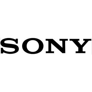 Sony'nin yeni oyunu: Destiny of Spirits
