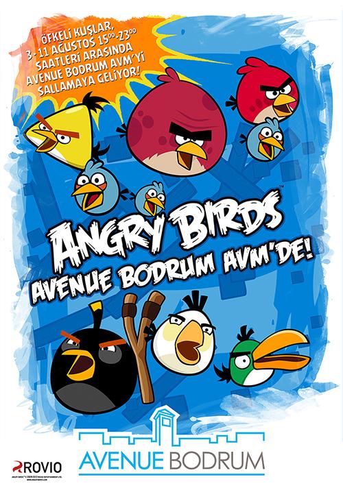 Angry Birds Bodrum'u sallamaya geliyor!