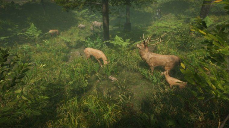Simülasyon, strateji ve hayatta kalma oyunu Natural Instincts duyuruldu